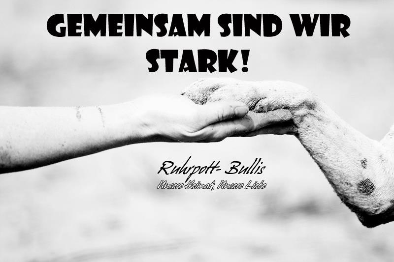 Gemeinsam sind wir STARK